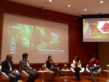 Natura Startups
