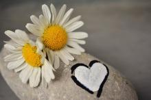 Flores Amor